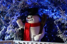 Baytree Winter Wonderland CHRISTMAS GROTTO